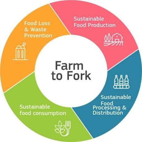 Grafik Farm to Fork